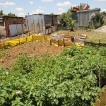 Garden-at-EU-workshop